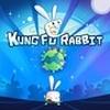 Kung Fu Rabbit artwork