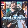 Pool Nation artwork