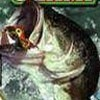 TNN Outdoor Fishing Championship (GBC) game cover art