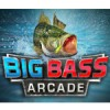 Big Bass Arcade (WII) game cover art