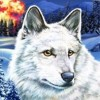 Nancy Drew: The White Wolf of Icicle Creek artwork