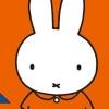 Oyako de Asobo: Miffy no Omocha Bako (WII) game cover art