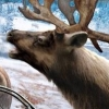 Remington Super Slam Hunting: Alaska artwork