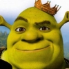 Shrek the Third (WII) game cover art