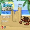 Sandy Beach (WII) game cover art