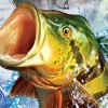 Shimano Xtreme Fishing artwork