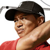 Tiger Woods PGA Tour 08 artwork