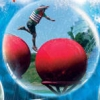 The Ultimate Red Ball Challenge (WII) game cover art