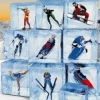 Winter Sports 2: The Next Challenge (WII) game cover art