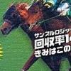 Keiba Yousou Shien Soft: Yosou Shin Karon (WDS) game cover art