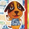 Animal Crossing: Happy Home Designer artwork