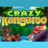 Crazy Kangaroo (3DS) game cover art