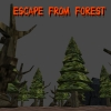 Escape From Forest (XSX) game cover art