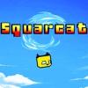 Squarcat (3DS) game cover art