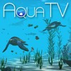 Aqua TV artwork