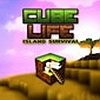 Cube Life: Island Survival (WIIU) game cover art