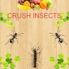 Crush Insects (WIIU) game cover art