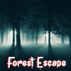 Forest Escape (WIIU) game cover art