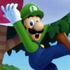 New Super Mario Bros. U + New Super Luigi U artwork