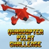 Quadcopter Pilot Challenge (WIIU) game cover art