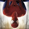 The Amazing Spider-Man 2 (PS4) game cover art