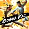 Cobra Kai: The Karate Kid Saga Continues artwork