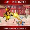ACA NeoGeo: Samurai Shodown V artwork