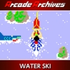 Arcade Archives: Water Ski (XSX) game cover art