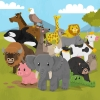 Animal Fun for Toddlers and Kids artwork