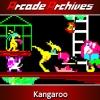 Arcade Archives: Kangaroo artwork