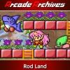Arcade Archives: Rod Land artwork