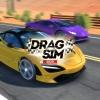 Drag Sim 2020 artwork