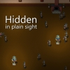 Hidden in Plain Sight artwork
