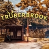 Trüberbrook (SWITCH) game cover art