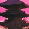 Yamamura Misa Suspense: Kinsenka Kei Ezara Satsujin Jiken (XSX) game cover art