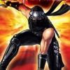Ninja Gaiden: Dragon Sword artwork