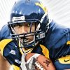 NCAA Football 09 artwork
