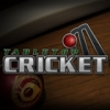TableTop Cricket artwork