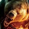 Cabela's Dangerous Hunts 2011 (XSX) game cover art