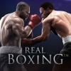 Real Boxing artwork