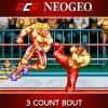 ACA NeoGeo: 3 Count Bout artwork