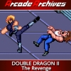 Arcade Archives: Double Dragon II - The Revenge (XSX) game cover art